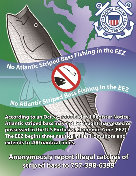 Stripped Bass Fishing Regulations in the EEZ